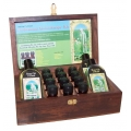 Professional Aromatherapy Kit 12 essential oils and 4 base oils
