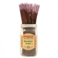 Wild berry incense - Prairie Sage™